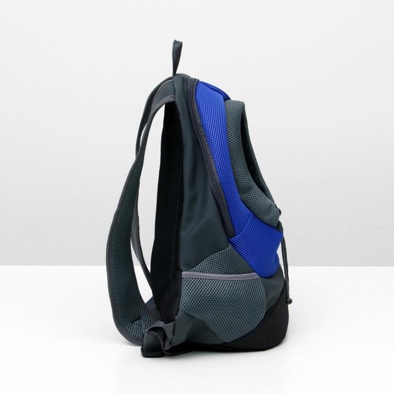 Рюкзак для переноски животных, 35 х 15 х 43 см, микс цветов