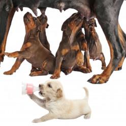 Для щенков, беременных и кормящих собак