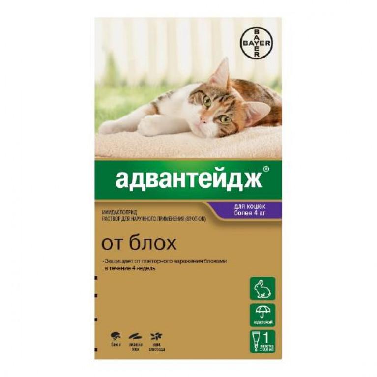 Advantage Адвантейдж для кошек массой более 4 кг (4 пипетки по 0,8 мл)
