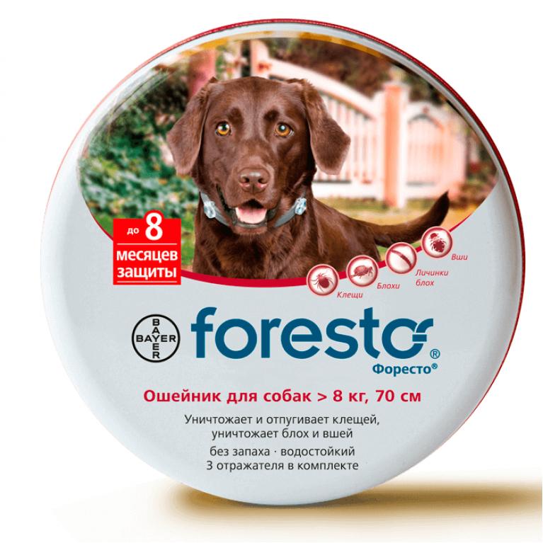 Foresto Форесто ошейник для собак 70 см более 8 кг (на 8 месяцев)