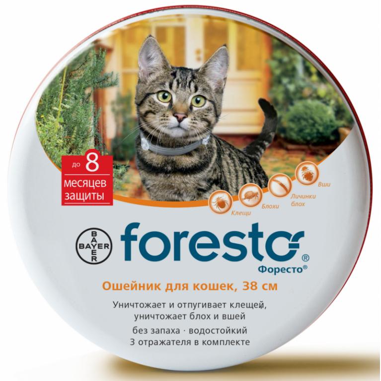 Foresto Форесто ошейник для кошек 38 см менее 8 кг (на 8 месяцев)