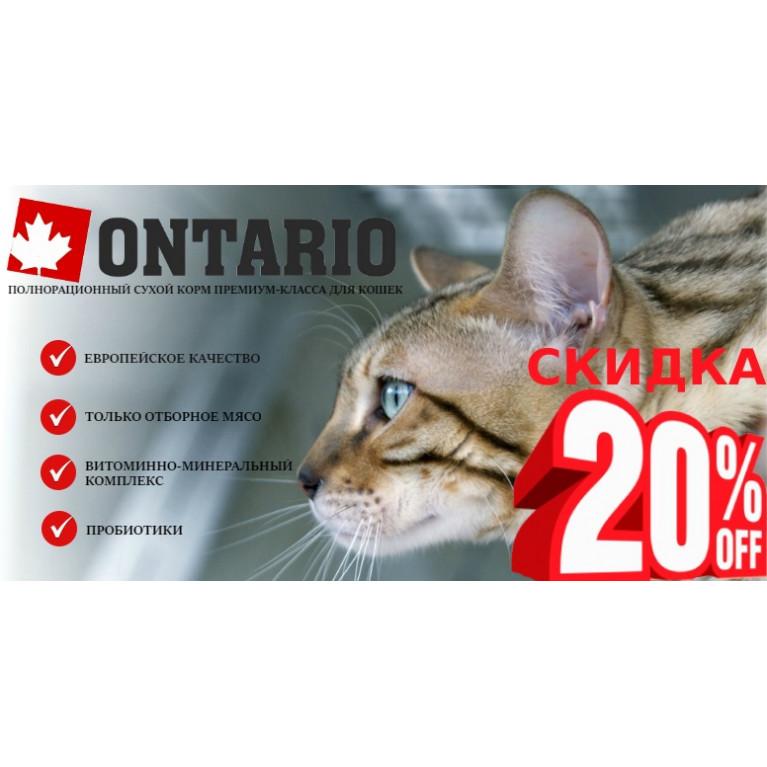 -20% на сухие корма ONTARIO для кошек