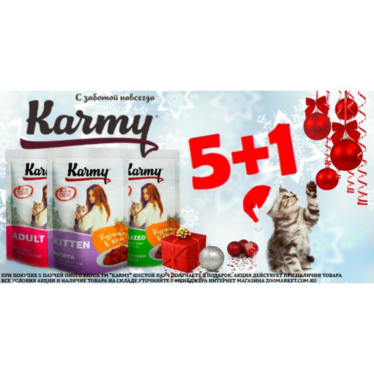 Купи 5 паучей ТМ Karmy и получи шестой в подарок*