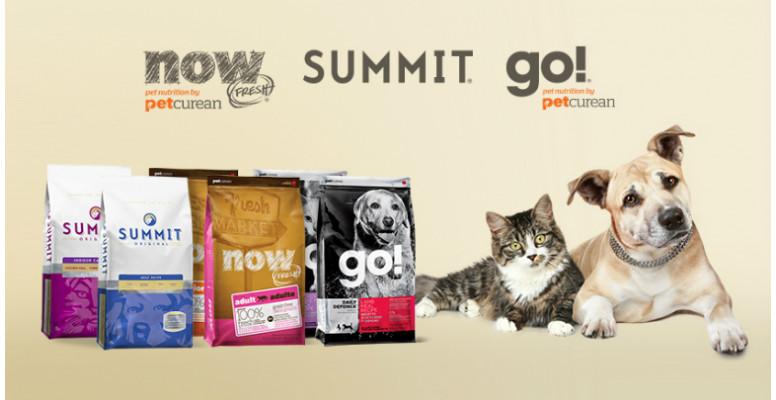 Go \ Now Fresh \ Summit