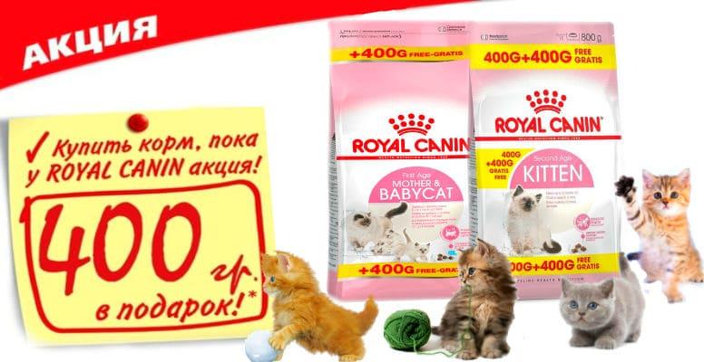 Royal Canin 400+400*