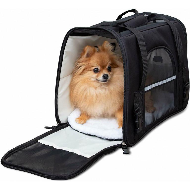 Почему важно использовать переноску для животных во время транспортировки?