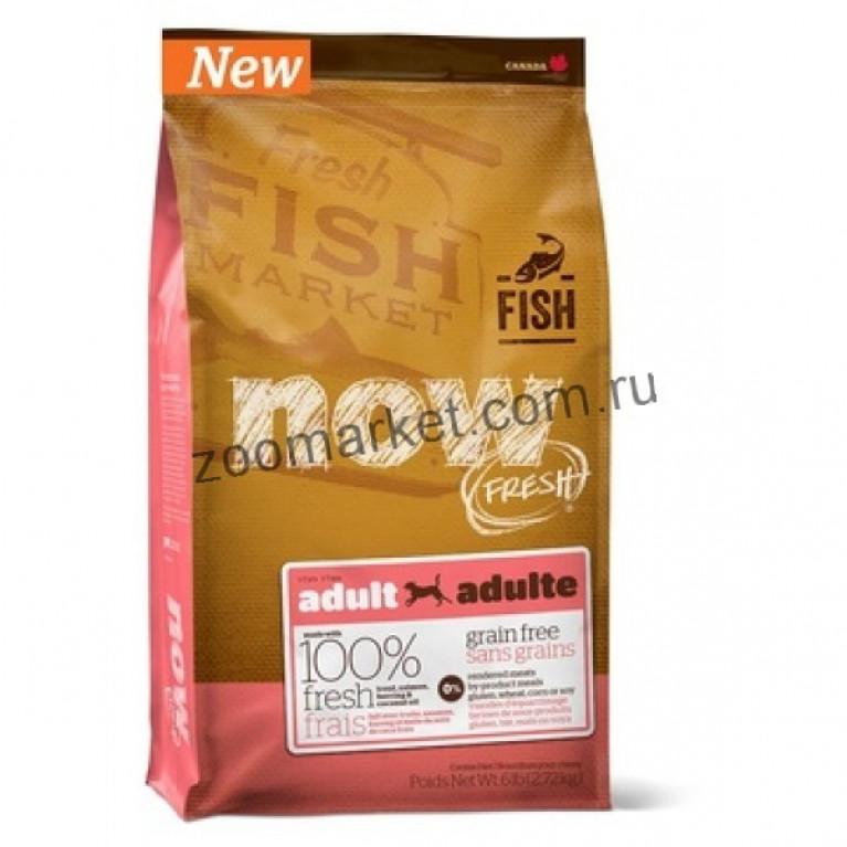 Now Fresh Grain Free Fish Adult Recipe/Беззерновой корм для взрослых собак с форелью и лососем для чувствительного пищеварения