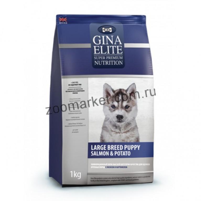 Gina Elite Large Breed Puppy Salmon & Potato/Корм высшей категории качества для щенков крупных пород (с лососем и картофелем)