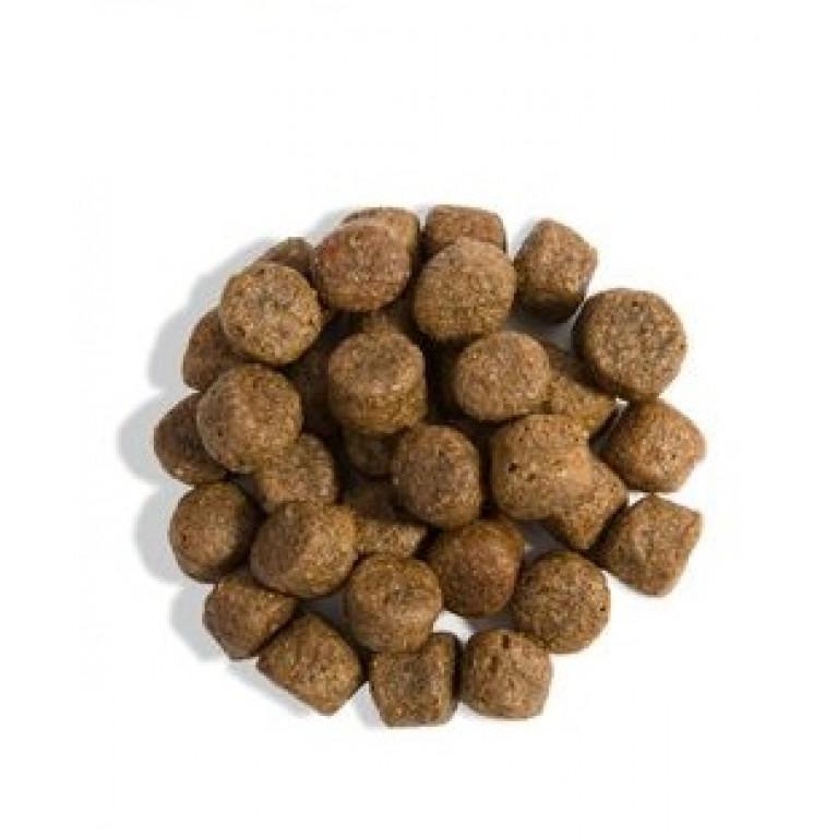 GINA Dog Lamb & Rice Гипоаллергеный корм для собак, страдающих пищевыми аллергиями, кожными заболеваниями и проблемами пищеварения