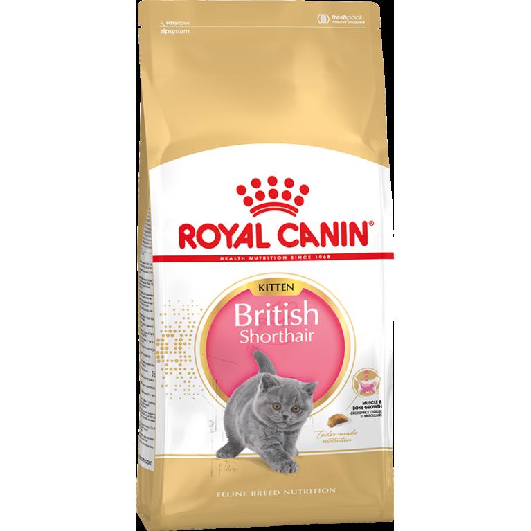 Royal Canin Kitten British Shorthair/Сухой корм для британских короткошерстных котят
